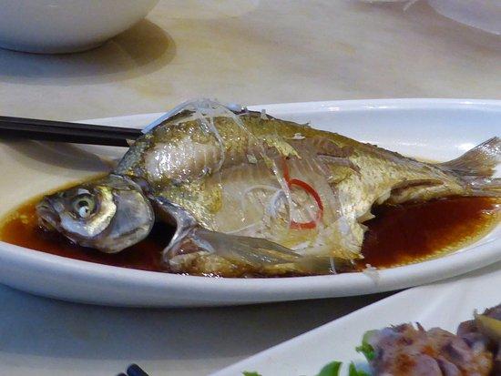 Muslim Traveller, Berikut 10 Rekomendasi Tempat Makan Halal di Shanghai 10 Rekomendasi Tempat Makan Halal di Shanghai