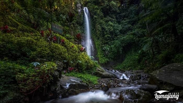 10 Wisata Alam di Lumajang, Kerennya Kebangetan 10 Wisata Alam di Lumajang